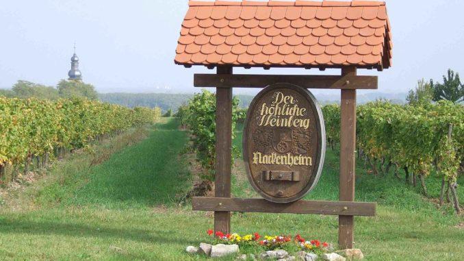 Der fröhliche Weinberg in Nackenheim