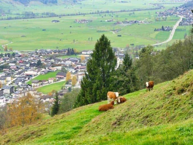 Saalbach Hinterglemm im Urlaub erleben